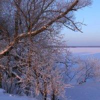 Зимним утром :: Юрий Морозов