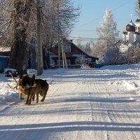 Вот моя деревня! :: Ирина Чикида