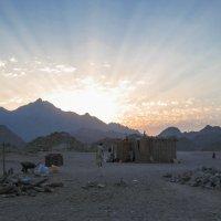 закат в пустыне :: Наталья Ерёменко