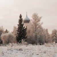 У леса на опушке :: Евгений Никифоров
