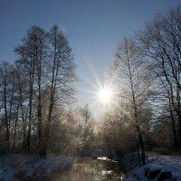 Лучи тепла :: Евгения Стасеня