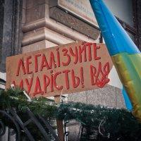 .. :: Евгения Стасеня