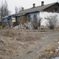 Как нибуть зиму переживём. :: Анатолий Кузьмич Корнилов