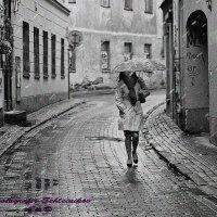 Дождь в городе. :: Evgenij Schleinikov