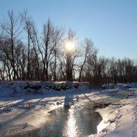 Январское солнце :: Dr. Olver