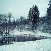 Зимние зарисовки :: Любовь Анищенко