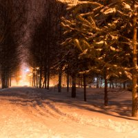 Зимняя сказка :: Анастасия Тимошина