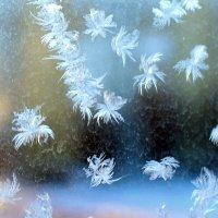 Кружева на моем окне - 3 :: Оксана Рубан