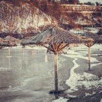 Зонтики :: Андрей Завадский