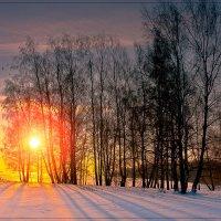 Зимний вечер :: Nikita Volkov