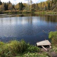 У озера :: Сергей Круглов