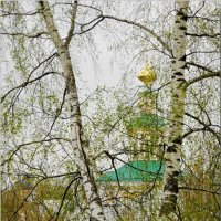 А вот и май! :: Владимир Шошин