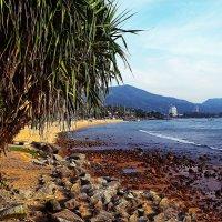 Patong, Phuket, Thailand/ :: Рай Гайсин
