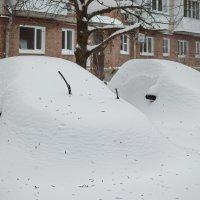 В Таганроге сегодня Зима :: Константин Бобинский