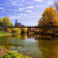 Мост в осень :: Сергей Бордюков