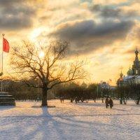 Декабрьское солнце :: c_rust ><