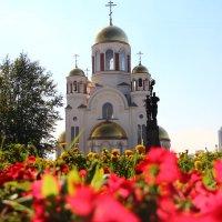 храм на крови :: Серёга Марков