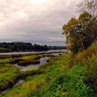 Берега реки Луга :: Олег .