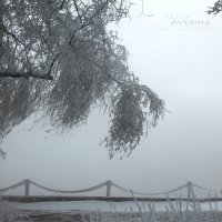 Зимняя сказка... :: Алина Аверина
