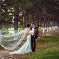 Волшебный лес :: Дмитрий Катин