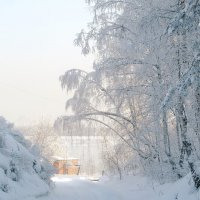 Распустились кисти белой бахромой :: Нина северянка