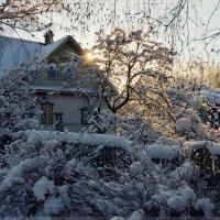 отметелило нашу деревню...)) :: Ирэна Мазакина
