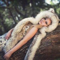 Рысь :: Ирина Боярко