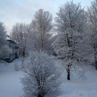 Зима :: Валерий Смирнов