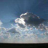 Я солнце! :: Роман Чунюк