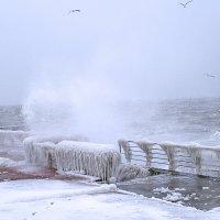 На пляже в Одессе ,сезон открыт.. :: Виталий Ярко