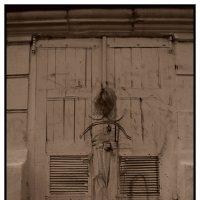 призраки заброшенных домов :: Ольга Степанова