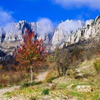 Крымские пейзажи... :: Андрей Артемьев