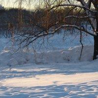 Зима плетёт из света паутинку :: Ирина Данилова