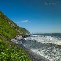 Море :: Алексей Крашенинников
