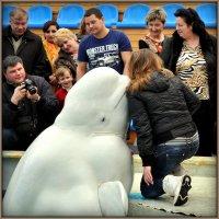 белый кит :: Ник Карелин
