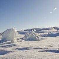 Долина ледяных глыб :: Сергей Лошкарёв
