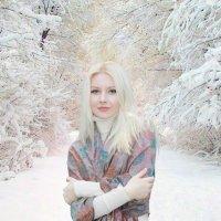 Новогодняя сказка :: Мария Шатрова
