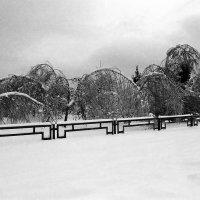 ледяной дождь :: Борис Иванов