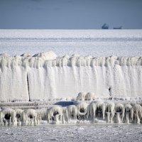Заледенело Черное море :: Светлана Недельская