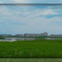 Северодвинск :: Оксана Иваненская