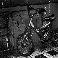 одинокий велосипед :: Анна Бушуева