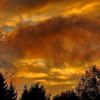 Вечерние облака :: Валерий Тумбочкин