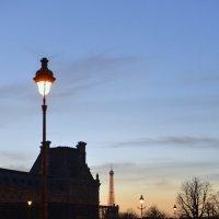 Вид со двора Лувра. :: Lev nikon