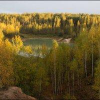 Золотая Осень. :: Михаил Розенберг