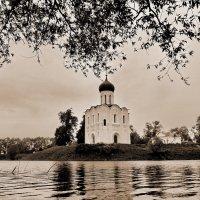 Встреча в мае! :: Владимир Шошин