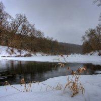 Зарисовки зимы :: Nikita Volkov