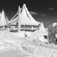 Зимний пейзаж :: Светлана Недельская