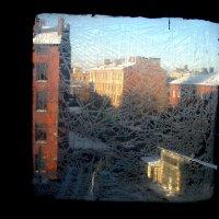 Вид из окна :: Игорь Нелюбович