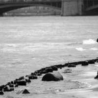 игры с волной. :: сергей лебедев