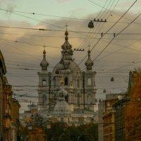Смольный собор ( в городской паутине) :: Сергей Глотов